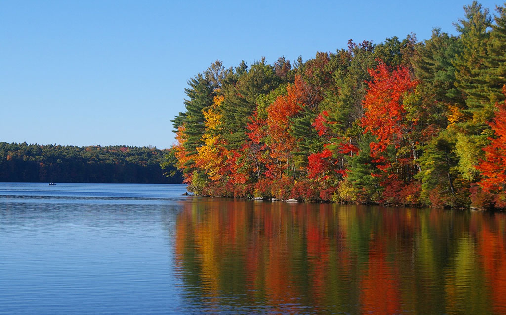Autumn in Northern Minnesota: The Magical Escape
